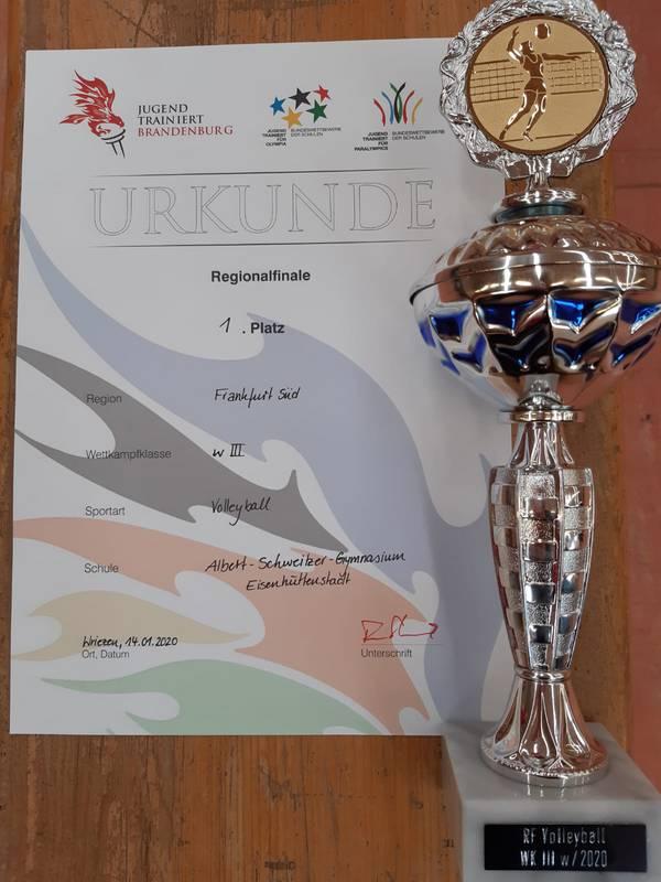 Regionalsieger im Volleyball